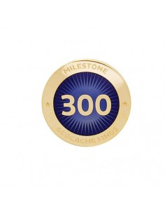 Milestone Pin 300 Funde
