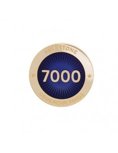 Milestone Pin 7000 Funde