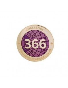 Challenges Pin 366 Tage